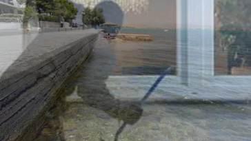 Παραλία Αυλίδας