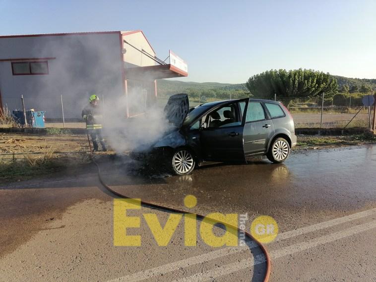Ψαχνά Ευβοίας: ΙΧ αυτοκίνητο τυλίχτηκε στην φλόγες στην μέση του Δρόμου
