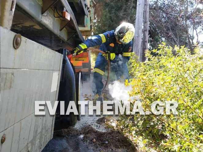 Ψαχνά Ευβοίας: Φορτηγό έπιασε φωτιά εν κινήσει στον Πεθαμένο