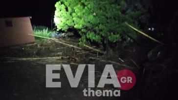 Εύβοια: Πυροσβέστες έσωσαν οικογένεια