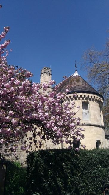 Chroniques anglaises #43 : Hello May
