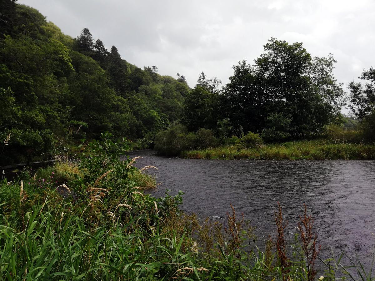 Peebles, Scottish Borders