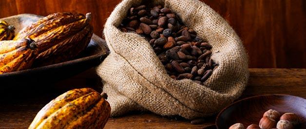clif-bar-emeryville-cocoa-rainforest-alliance