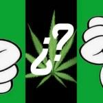 Последствия курения марихуаны (без эмоций)