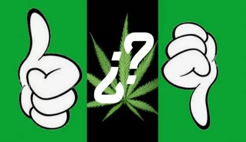 marihuana-top