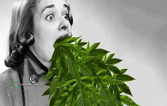 foto-kurenie-i-gastroskopiya-marihuana-kalyan-el-sigaretyi