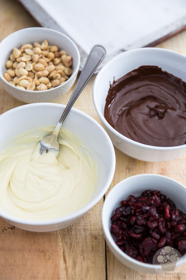 Cranberry Peanut Chocolate Bark | eviltwin.kitchen