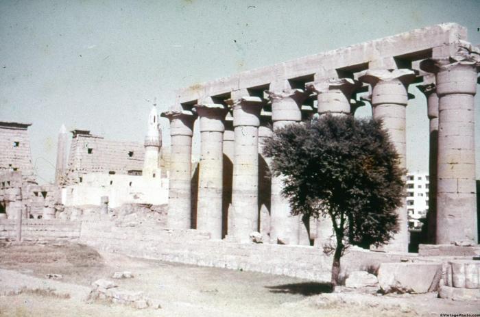 Lotus Pillars