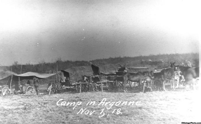 Camp in Argonne - November 1st 1918