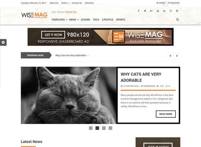 best premium blogging theme: Wise Mag