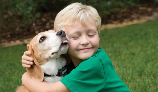Домашние питомцы понижают риск астмы удетей