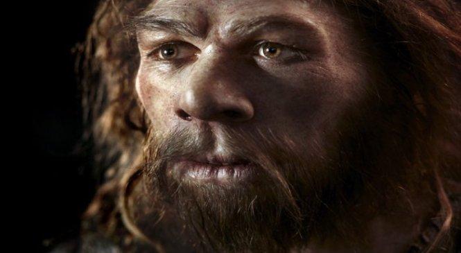 Ученые выяснили, как неандертальцы ловили птиц в пещерах ради еды