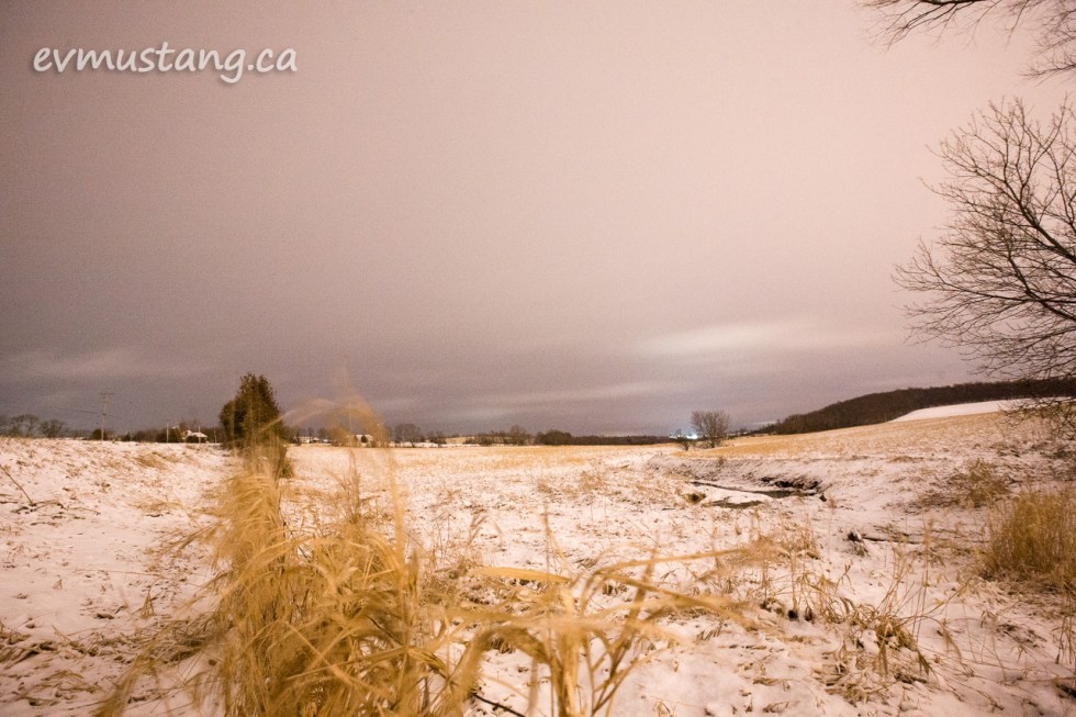 image of snow dusting a rolling field at night with a stream and long dried grasses