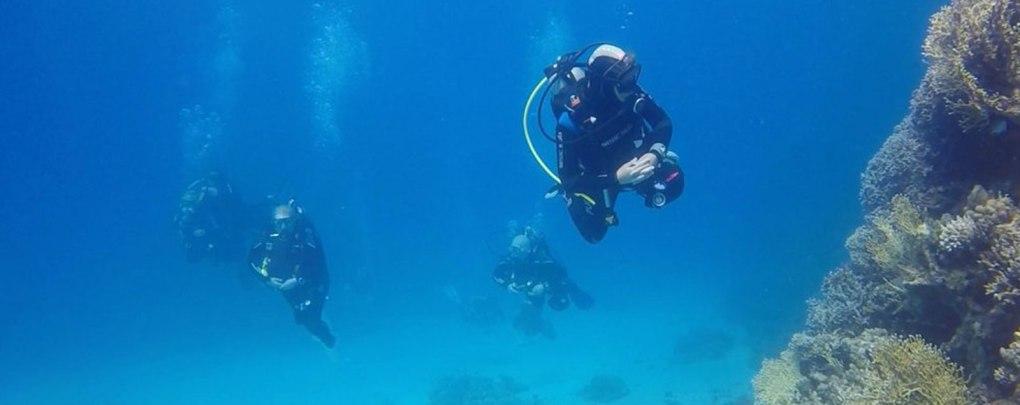 padi scuba diving courses malapascua diving resort