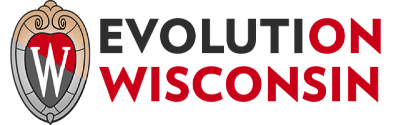 Evolution Wisconsin
