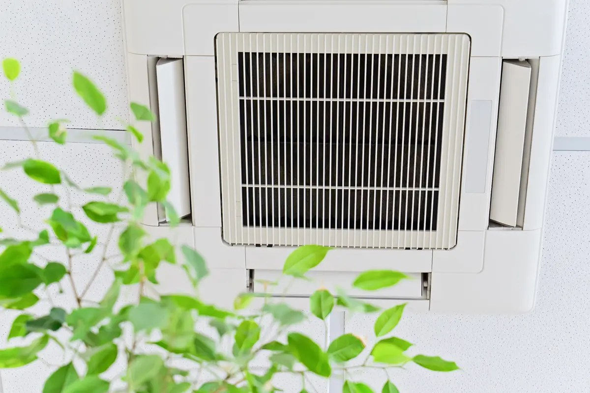 Ceiling air conditioner in modern office or at home with green ficus plant leaves an idea of clean air. Indoor air quality concept