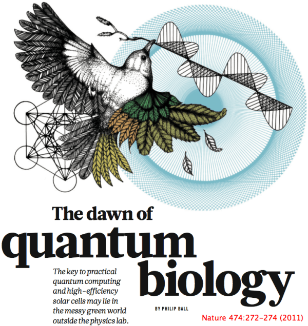 From Julian Huxley to Quantum Biology | Evolutionary Stories