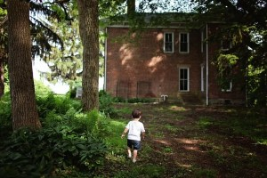 A boy in a backyard