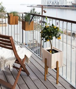 A balcony with a chair and houseplants