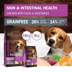 DOG Skin and Intestinal Health