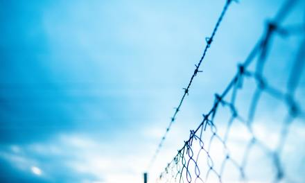 Never Again: Expanding Our Hearts