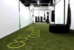 Skill e1378161704630 - Skill room - Evolve All, martial arts training
