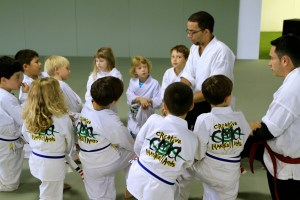 Youth martial arts – Evolve All