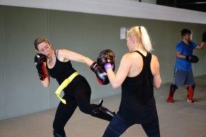 adult martial arts web - evolveall adult-martial-arts-web