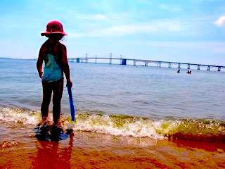 Heath Risk of Swimming in the Chesapeake Bay