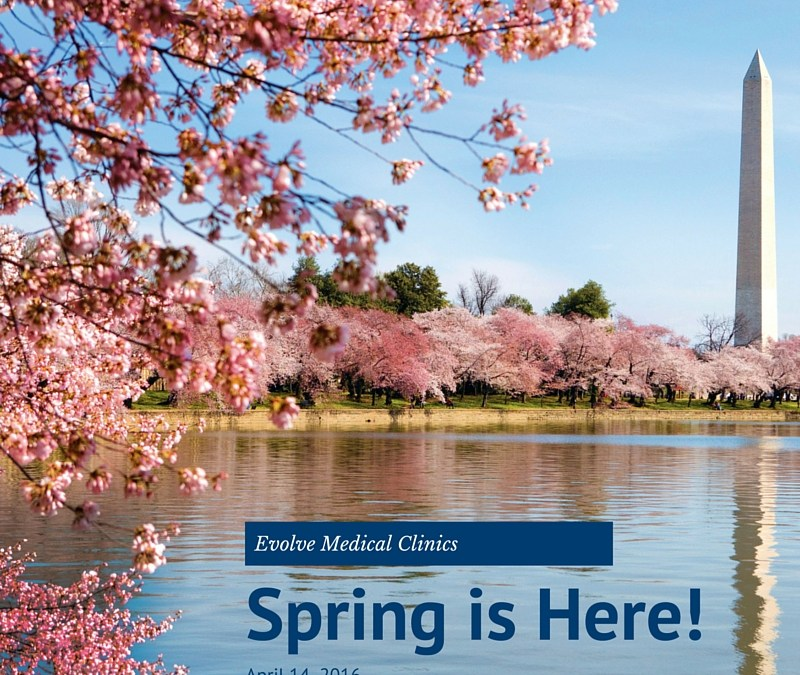 Primary Care Update: Maryland Spring Allergies