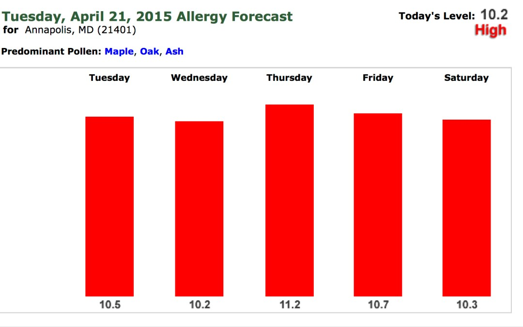 Allergy Season is Here: An Annapolis Primary Care Update from Evolve