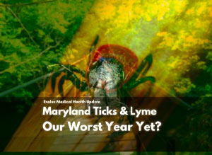 Maryland Ticks & Lyme: Our Worst Year Yet?
