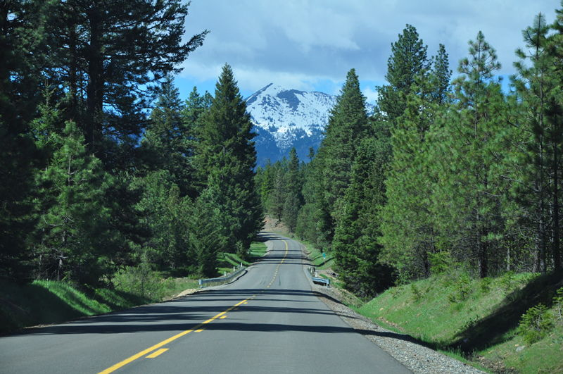 A view of a long road lined with trees leading into a snow capped peak in the cascade mountains while scouting free camping places while living in our RV full time on an adventure.