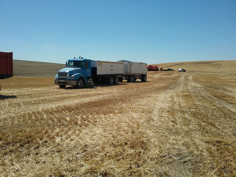 A Freightliner truck with trailer that I drove during my seasonal job as a truck driver for the wheat harvest as we travel the country full time in our RV.