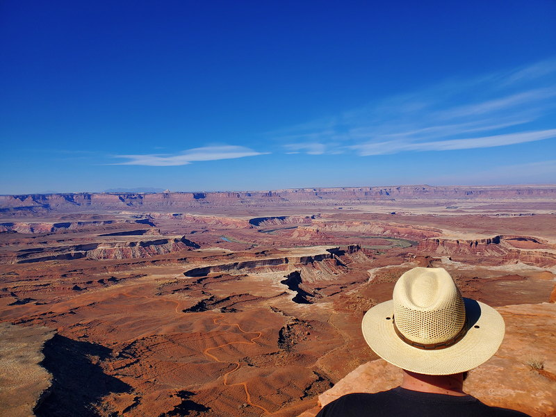 Adam looking out at the deep canyons in Canyonlands NP.