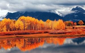 autumn-landscape-15638-1920x1200