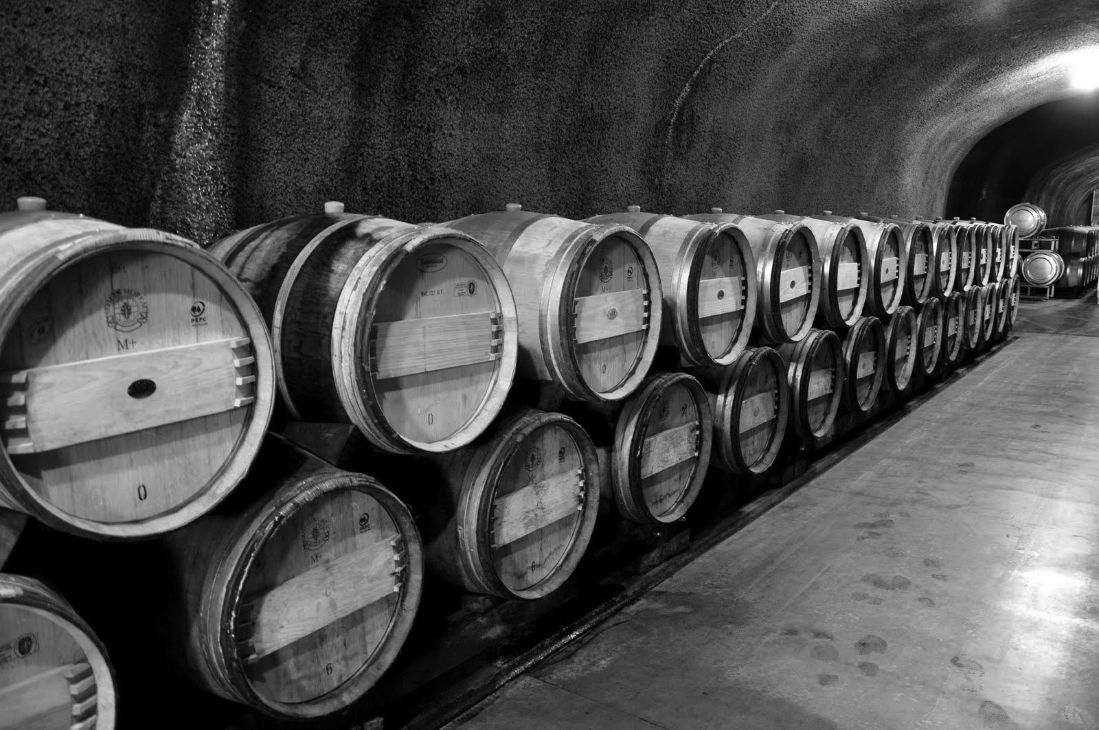 The Informed Consumer-Balsamic Vinegar Buyers Guide