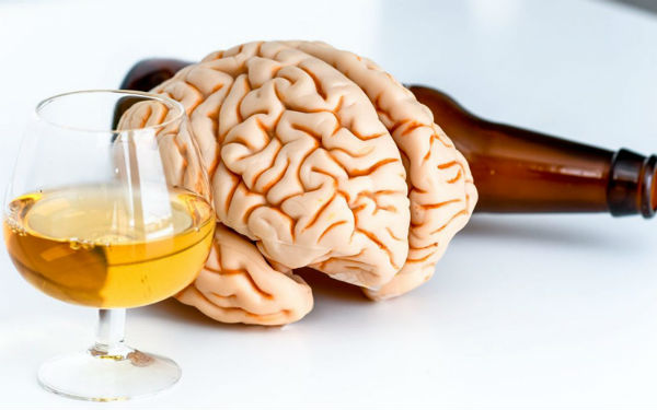How Does Alcohol Affect the Brain
