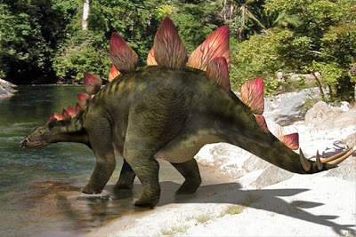 stegozaurus
