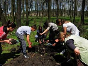 Местните хора в опит да въстановят гората в поразения от концесията район. Фото: За Земята/FoE Bulgaria