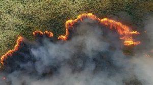 Пожарът в Черновските блата.