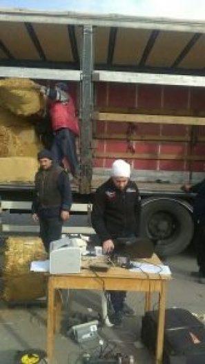 Тютюнът се измерва количествено и се натоварва в камиона на изкупувача.
