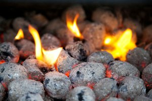 Charcoal – Word of the day  – EVS Translations