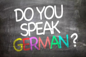 Focus sur l'allemand - EVS Translations