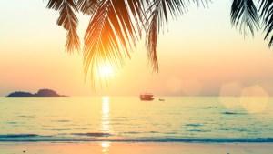 Soleil – Mot du jour - EVS Translations