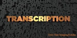 Professional Transcription Services - EVS Translations