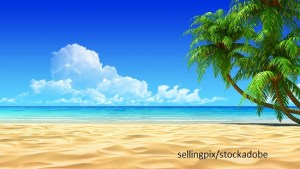 Beach – Word of the day – EVS Translations