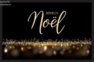Joyeux Noël! Noel – Дума на деня – EVS Translations