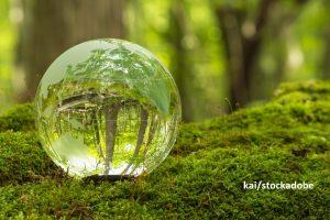 Доклади за устойчиво развитие за международни заинтересовани страни