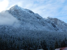 Snow in the mountains of Busteni